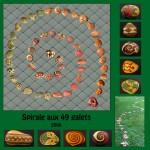 spirale-aux-49-galets-2006
